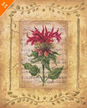 Sylvan Lake Collections Beebalm NO LONGER IN PRINT - LAST ONE!!