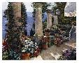 Howard Behrens Hotel Capri