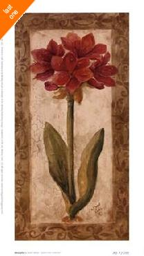 Sylvan Lake Collections Amaryllis   LAST ONES IN INVENTORY!!