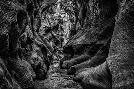 Duncan Slot Canyon Utah 3