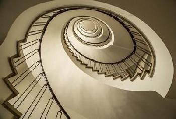Duncan Parrot Staircase