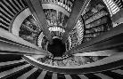 Duncan Royal Staircase 2 Black/white