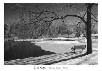 Monte Nagler Heritage Pond In Winter Canvas