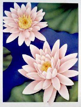 Monte Dolack Water Lilies Signed Open Edition