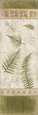 Jace Grey Ferns