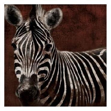 Jace Grey Zebra
