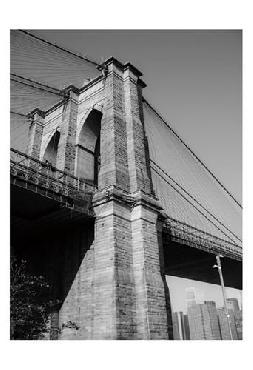 Sonja Quintero Beneath Brooklyn Bridge 1