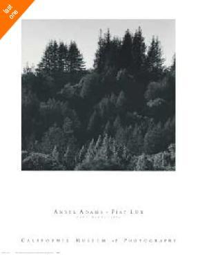 Ansel Adams Pine Ridge NO LONGER IN PRINT - LAST ONES!!