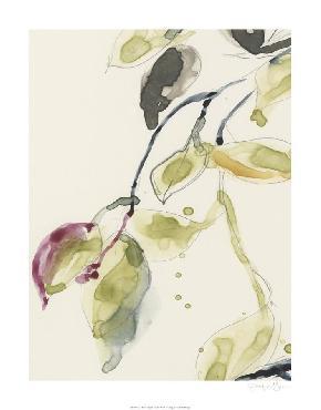Jennifer Goldberger Leaf Branch Triptych I Limited Edition Giclee