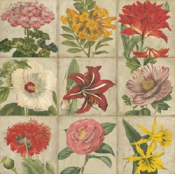 Vision Studio Vintage Flower Grid Giclee on Canvas