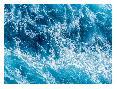 Eva Bane Turbulent Tasman Sea III