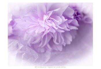 Eva Bane Dreamy Florals In VIolet II Prints