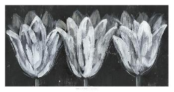 Jennifer Goldberger White Trio On Black I Open Edition Giclee - Matte