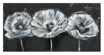 Jennifer Goldberger White Trio On Black II Open Edition Giclee - Matte