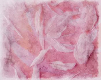 Eva Bane Coral Essence I Giclee Canvas