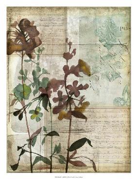 Jennifer Goldberger Music Box Floral I