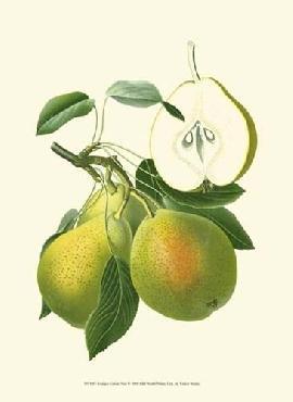 Vision Studio Antique Green Pear