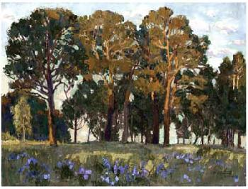 Vision Studio Sunset in Forest Giclee