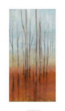 Jennifer Goldberger Birch Forest I Giclee on Canvas
