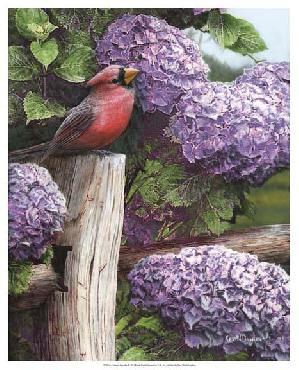 Kevin Daniel Crimson Splendor Giclee Canvas