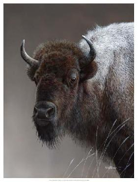 Kevin Daniel American Icon -  Buffalo Giclee on Canvas