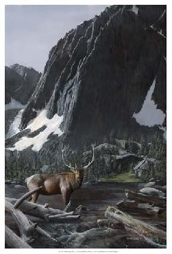 Kevin Daniel Mountainside Elk I Giclee Canvas