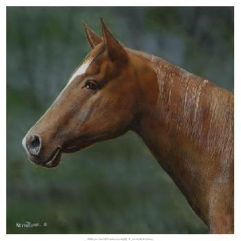 Kevin Daniel Quarter Horse Giclee on Canvas