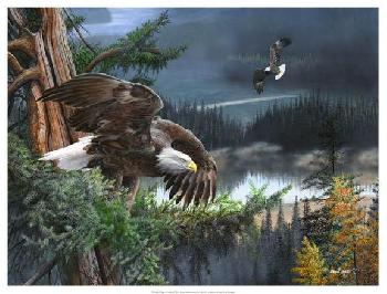 Kevin Daniel Wings Of Freedom Giclee on Canvas