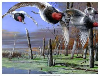 Kevin Daniel Backwater Cans Giclee on Canvas