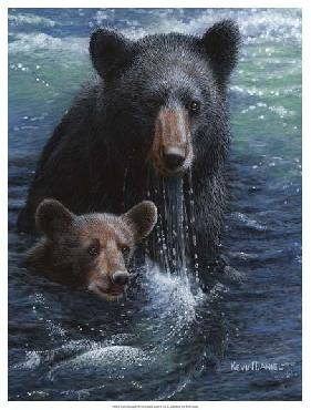 Kevin Daniel Bearly Swimming Giclee on Canvas