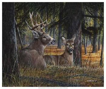 Kevin Daniel Autumn Royalty Giclee Canvas