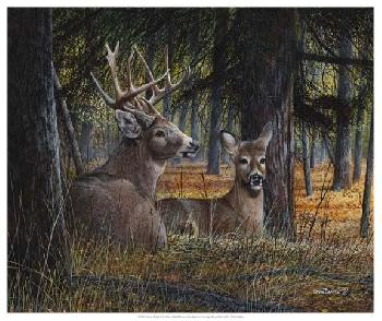 Kevin Daniel Autumn Royalty Open Edition Giclee