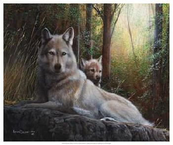 Kevin Daniel Recumbent Wolves Giclee Canvas