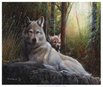 Kevin Daniel Recumbent Wolves Open Edition Giclee