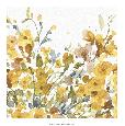 Audit Happy Yellow 08a Open Edition Giclee - Matte