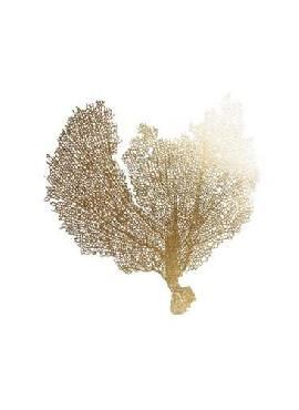 Vision Studio Gold Foil Sea Fan III