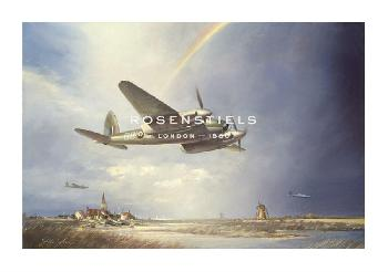 John Young Low - Flying Mosquito Gouttelette