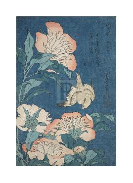 Katsushika Hokusai Peonies And Canary, C.1834 Gouttelette
