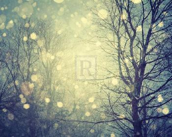 Irene Suchocki Winter Glow Giclee