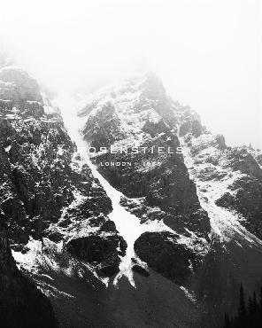 Irene Suchocki Summit  -  Detail Giclee