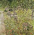 Klimt Orchard With Roses Giclee
