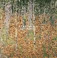 Klimt The Birch Wood Giclee