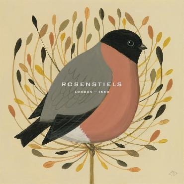 Catriona Hall Bullfinch Giclee Canvas