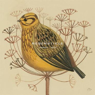 Catriona Hall Yellowhammer Giclee Canvas