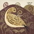 Hall Curious Curlew Giclee
