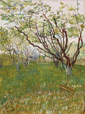 Vincent Van Gogh The Flowering Orchard Giclee Canvas