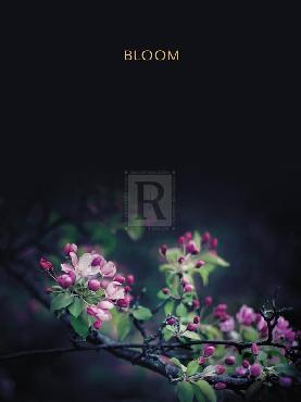Irene Suchocki Bloom  -  Luxe Giclee Canvas