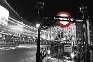 Leo Dolan Piccadilly Night