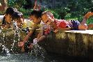 Nhiem Hoang The Pure Joy