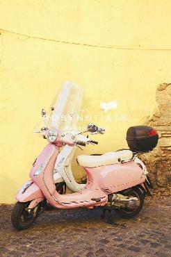 Irene Suchocki A Confident Ride Giclee Canvas